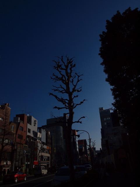 X3150120_1000x750.jpg