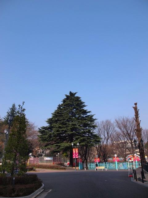 X3205641_1000x750.jpg